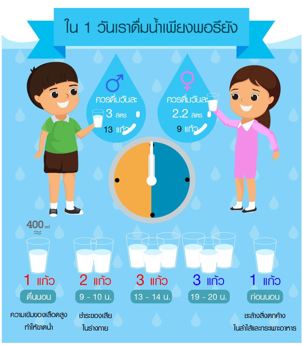 เราดื่มน้ำใน 1 วัน, รับทำสื่อ Infographic